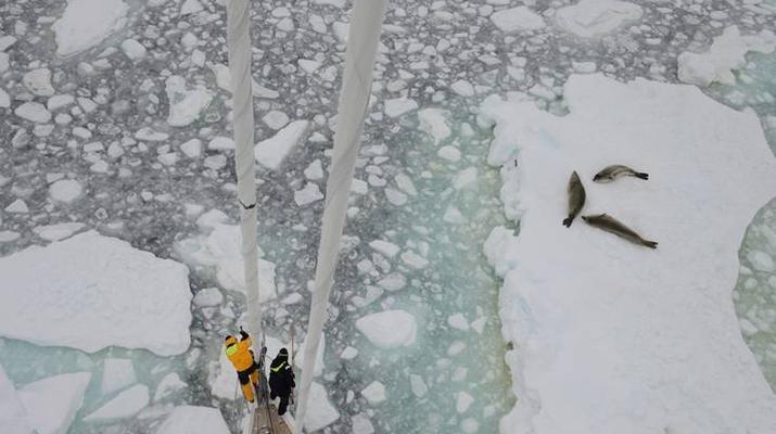 """Jacht """"Katharsis II"""" przepchnął się przez zaporę lodową ZDJĘCIA"""